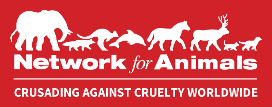 Network for Animals (Pty) Ltd
